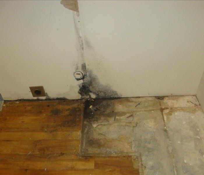 Commercial Water/Mold Damage in Dowagiac, MI