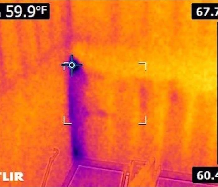 Infrared Scans Help Dry a Commercial Building in Edwardsburg, MI