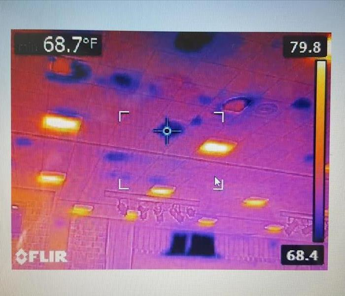 Infrared scan at Commercial Water Damage in Mendon, MI