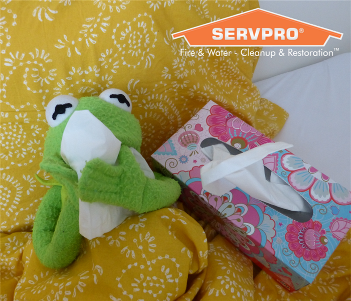 Kermit the frog blowing his nose with a tissue.
