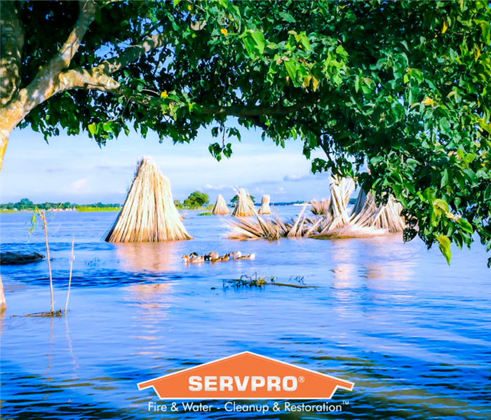 SERVPRO logo with flood in background.