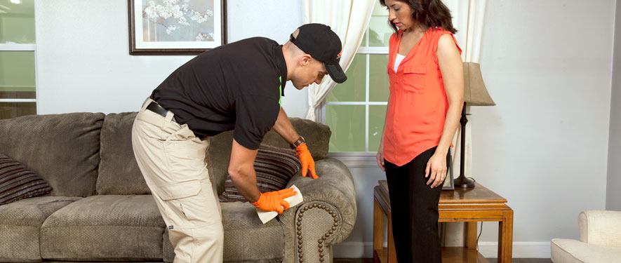 Three Rivers, MI carpet upholstery cleaning
