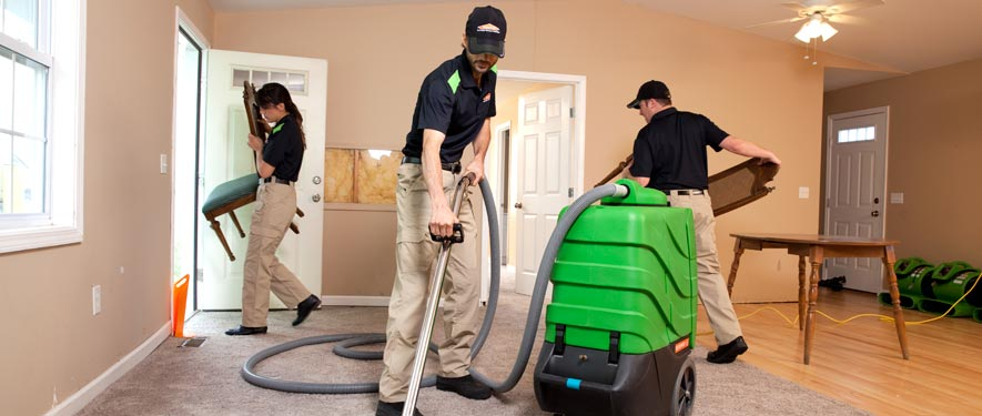 Three Rivers, MI cleaning services